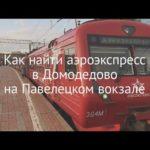 Как добраться от Павелецкого вокзала до Домодедово все способы с ценами