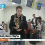Перевозка животных в самолете сложности, правила, советы